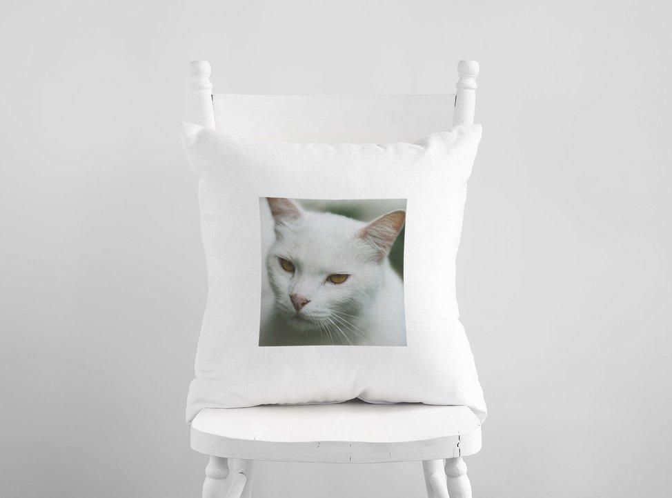 cuscino personalizzato con foto di gatto